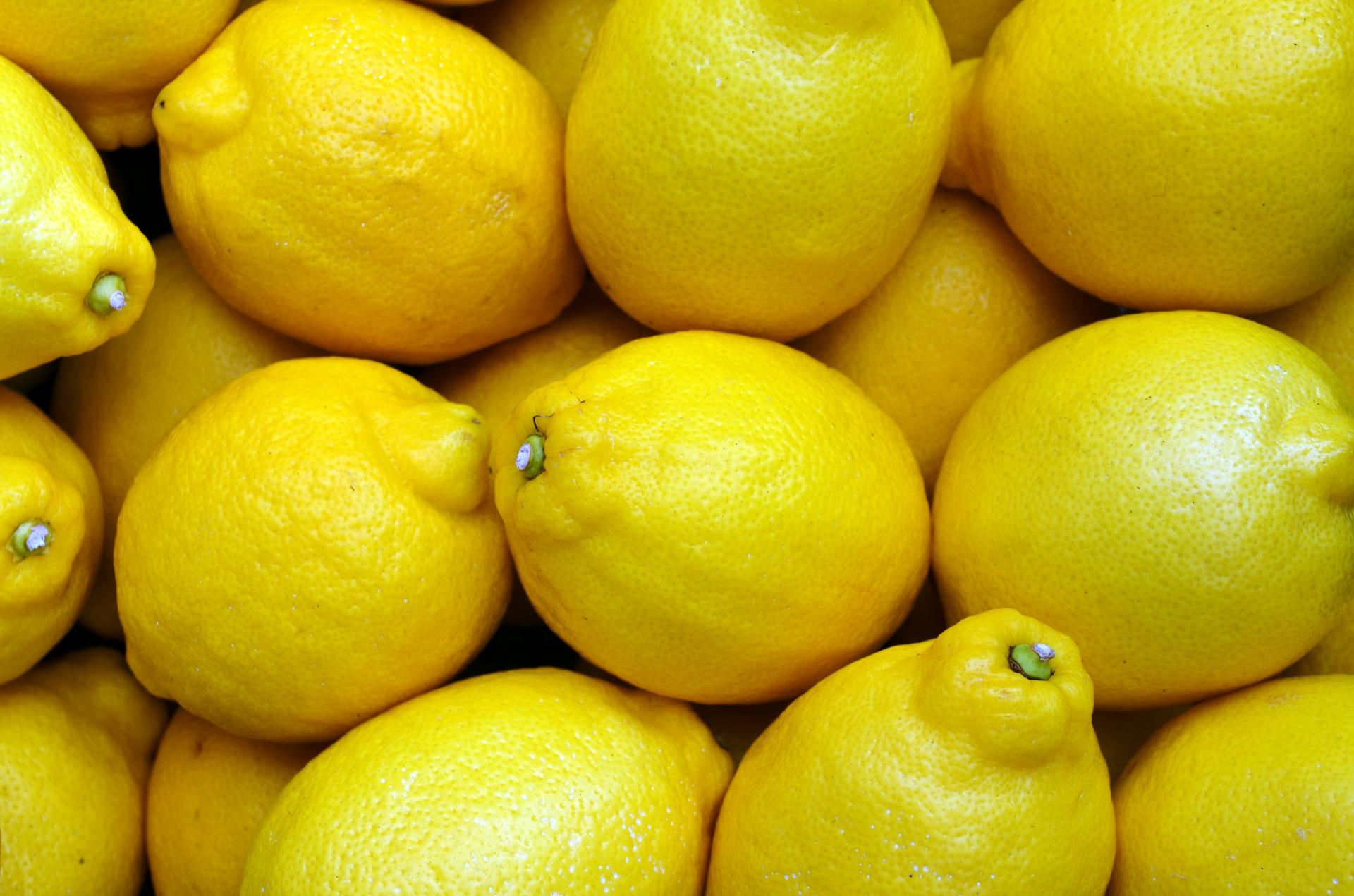 importateur-en-france-de-citron-2