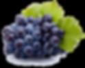 Importateur en France de Raisins