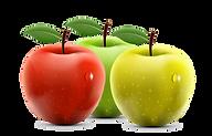 Importateur en France de Pommes