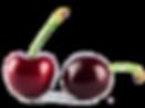 Importateur en France de cerises fraîches