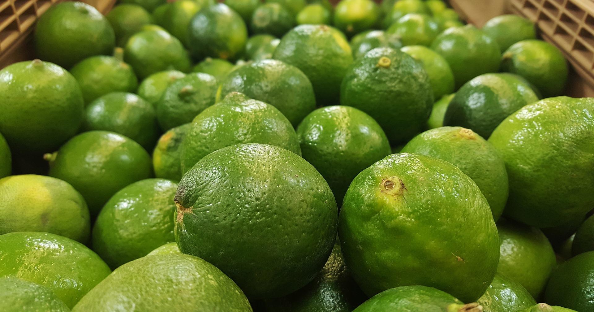 importateur-en-france-de-citron-vert-lime