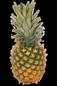 Importateur en France de d'ananas frais