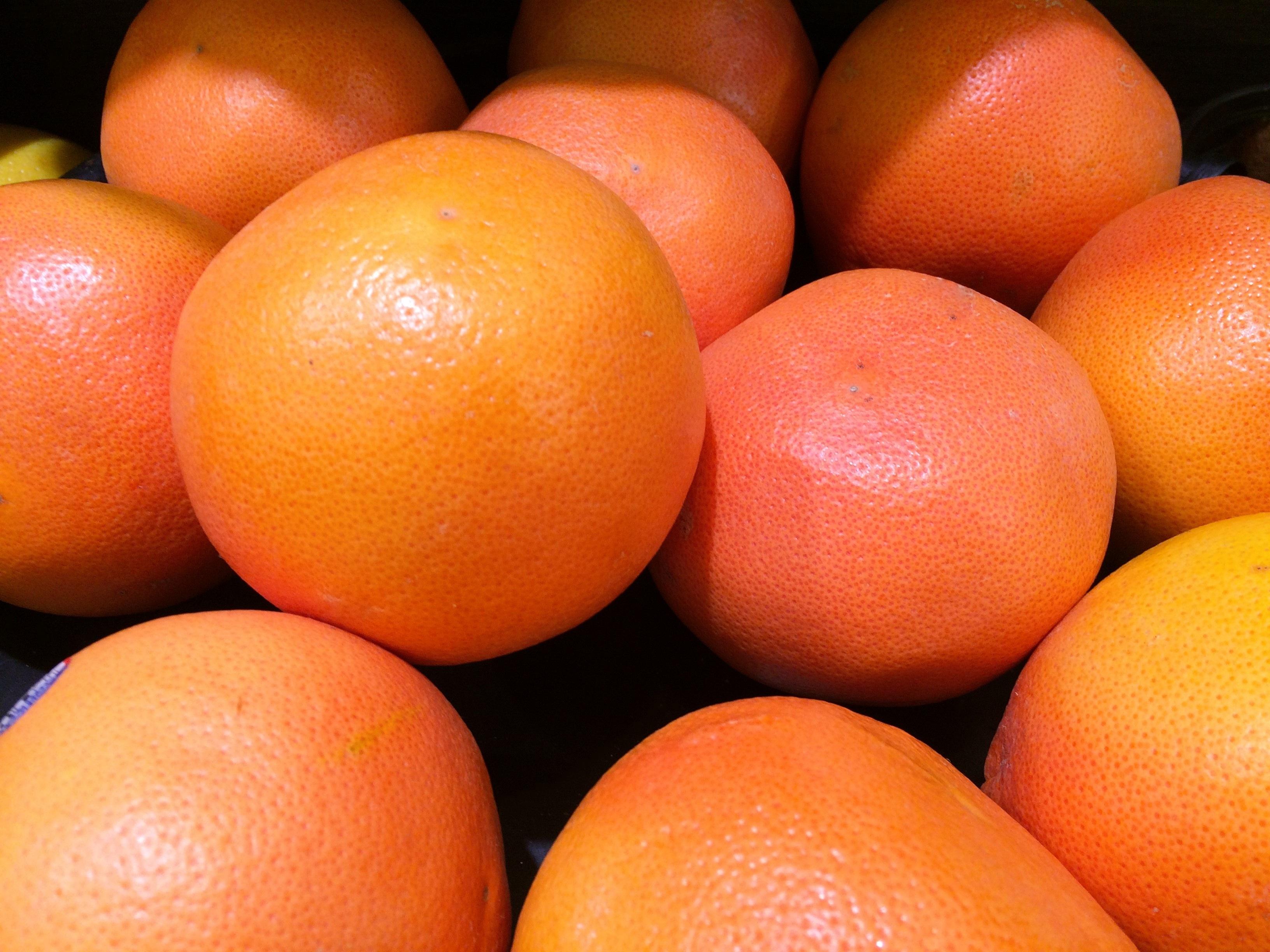 pomelos de Floride