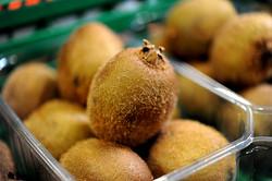 total-produce-indigo-vitrolles-exportateur-fruits-exotiques-3