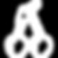 Importateur en France de cerises Bing fraîches