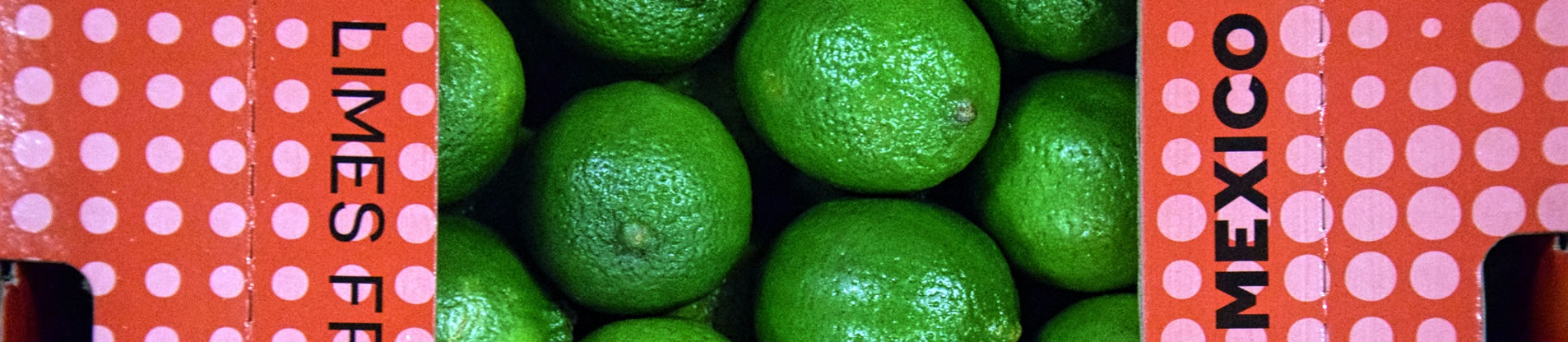 importateur-de-citrons-lime-en-france-1