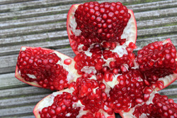 pomegranate-3802411