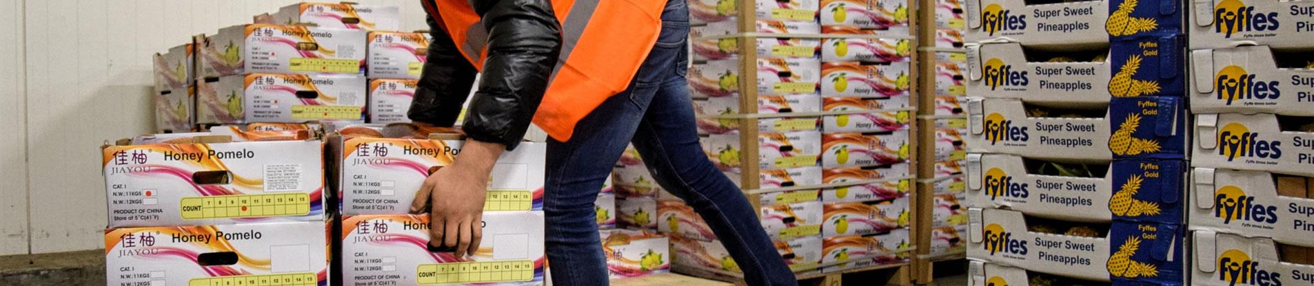 importateur-de-fruits-exotiques-et-fruits-de-contre-saison-marseille-france-6