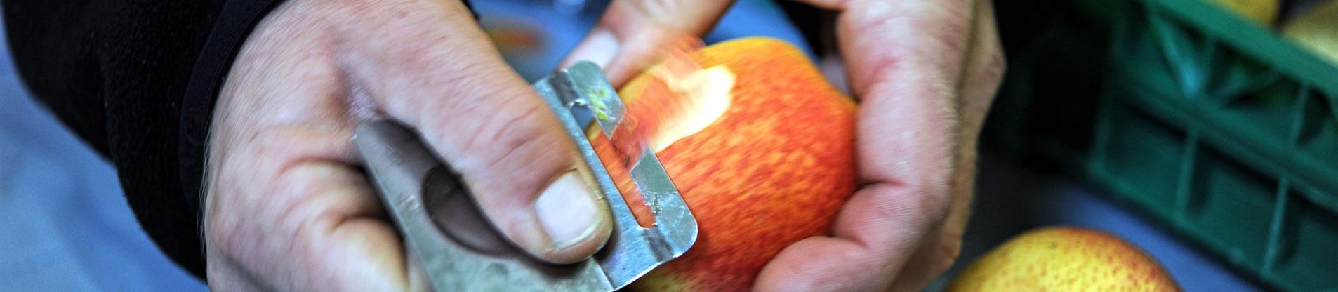 importateur-de-fruits-exotiques-et-fruits-de-contre-saison-en-france-3
