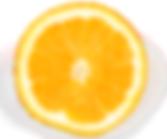 Importateur en France d'Oranges