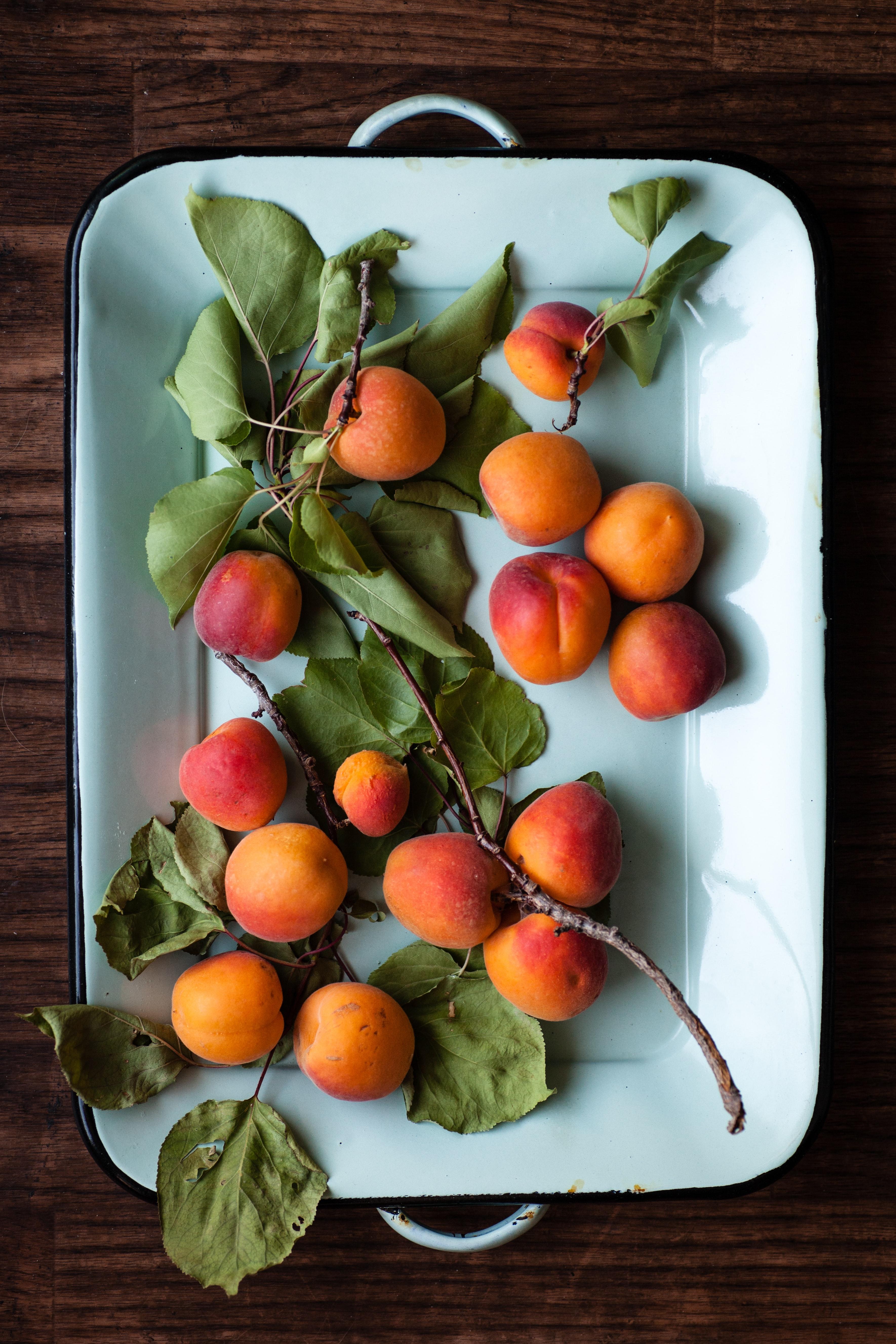 importateur-d-abricots-en-france-8