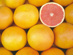 importateur-en-france-de-pomelos-2