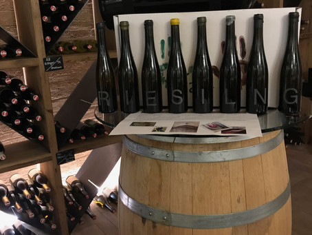 Wein gewinnt mit der richtigen Lagerung