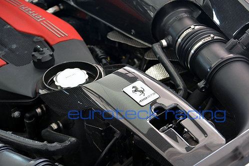 488 GTB / Spider Carbon Fiber Center Lock Plate / Oil Cover