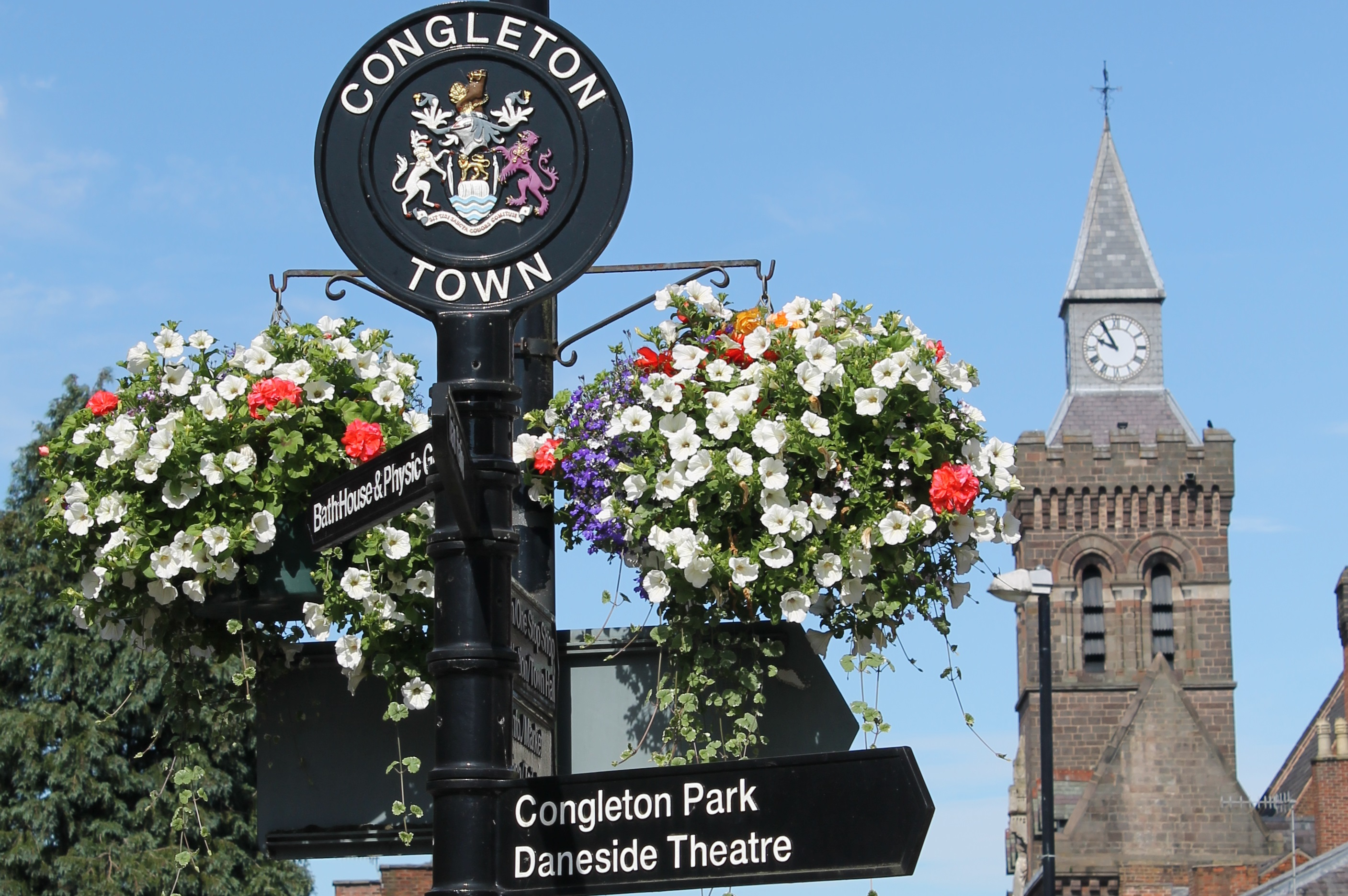 CongTownHall