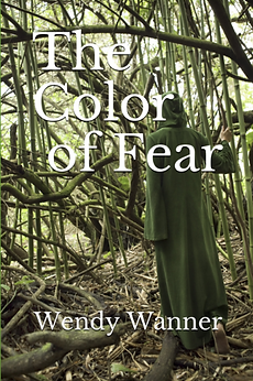 The Color of Fear paranoral mystery novel book cover
