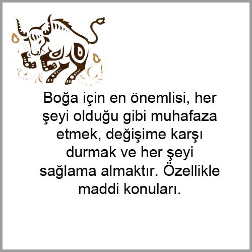 BOGA1.png