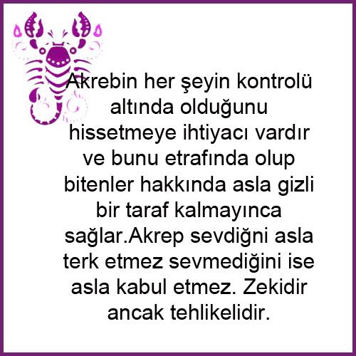 AKREP1.png