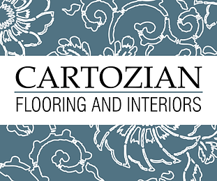 Cartozian Logo 2018.png