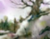 craggytree.jpg