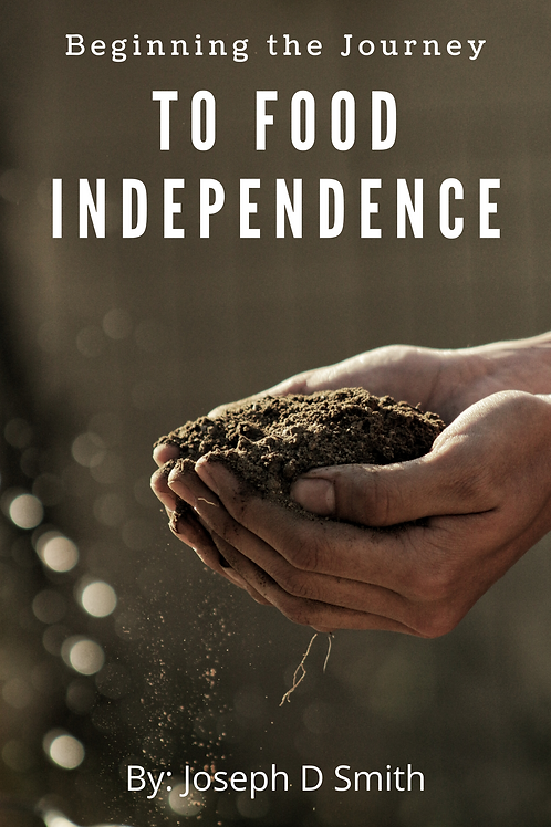 Beginning the Journey to Food Independence