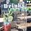 Thumbnail: Custom acrylic bar sign 11x14