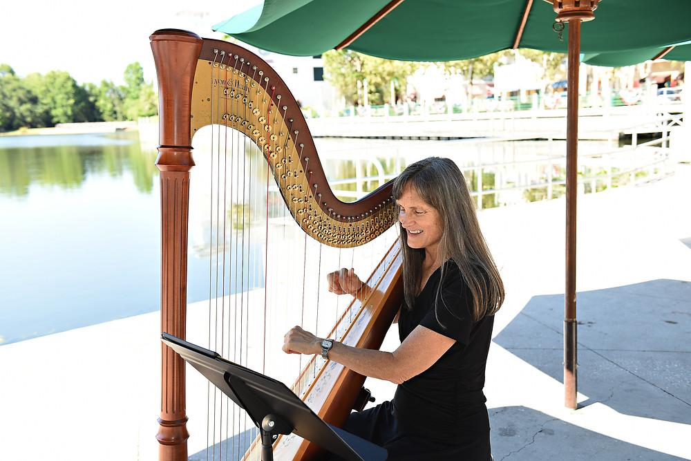 Intimate wedding harpist