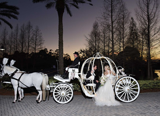 An enchanted wedding at the Waldorf Astoria Orlando!
