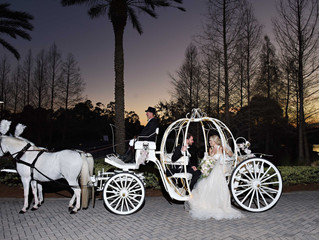 An enchanted wedding at the Waldorf Astoria Orlando!