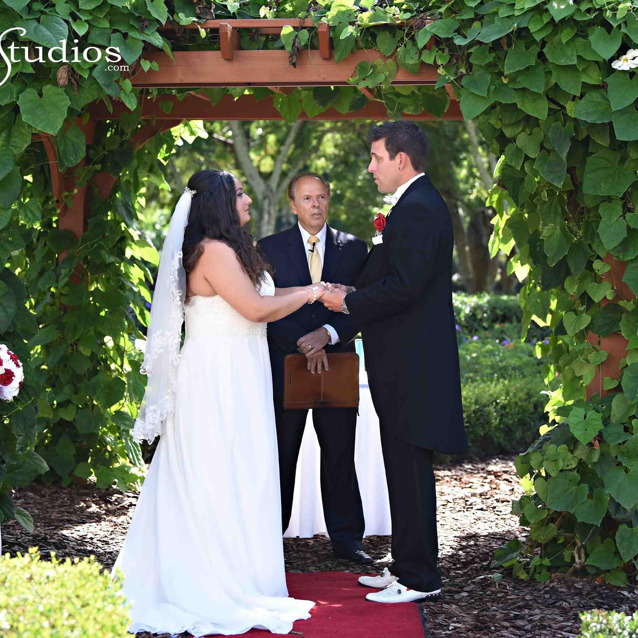 Butterfly garden wedding