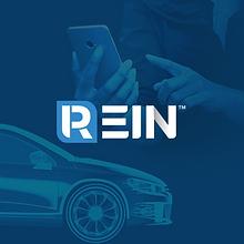 rein platform graphic.png