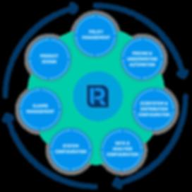 rein-studio-processes_v2 (1).png