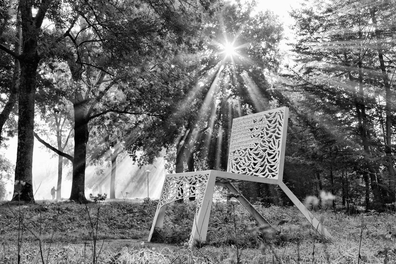 sunbeam©dorienhein-0639.jpg