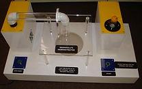 KVD Technologies Physics Exhibits Bernoulli's Demonstrator