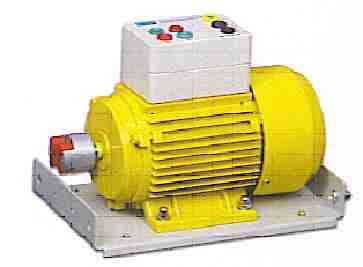EE1055 Single Phase Cap Start Motor.jpg