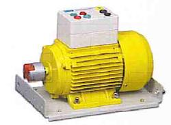 EE1055 Single Phase Cap Start Motor.jpg