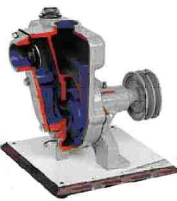 HP8-2 Centrifugal Pump with Peripheral Channel.jpg