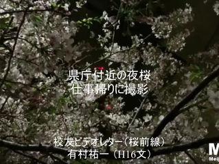 校友ビデオレター(桜前線)