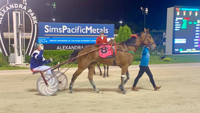 WINS FOR LOVE YOU, QUAKER JET IN NZ