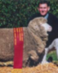 Melbourne Sheep Show 1998.jpg