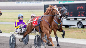 NEXT STOP - BREEDERS CROWN