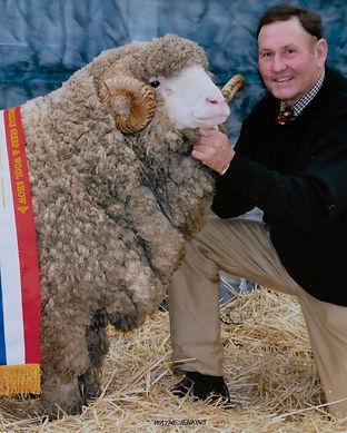 Australian Sheep & Wool Show Bendigo 201