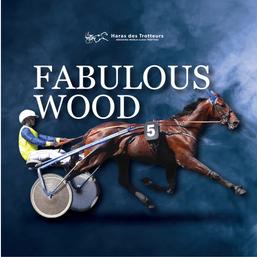 fabulouswood-15.png