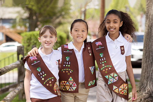 Girl Scout: Brownies