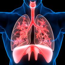 Respiratory and Pulmonary