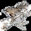 Logo Invoice Trans.png