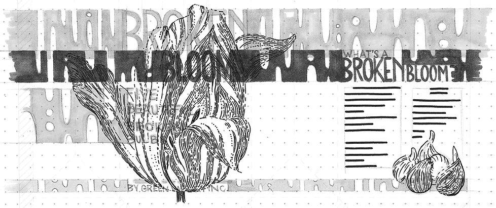 PORT_bloom-prelim-01.jpg