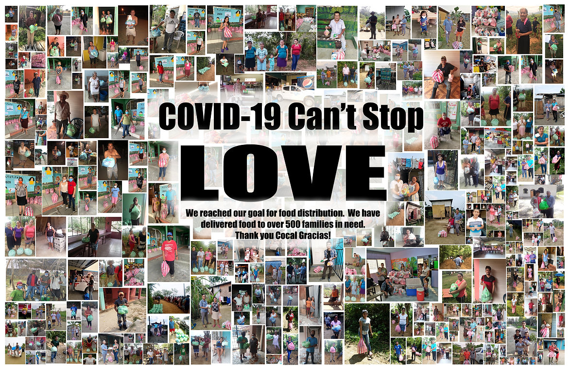 Collage for Covid POSTER.jpg