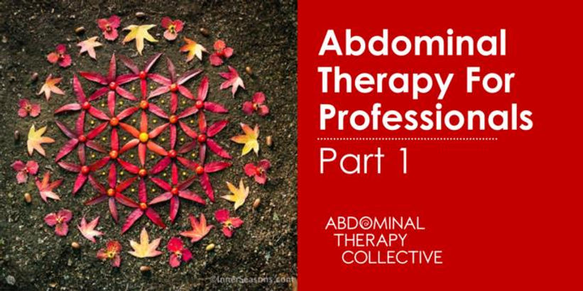 Abdominal Therapy for Professionals_PT 1.jpg