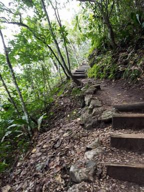 Belize Walk.jpg